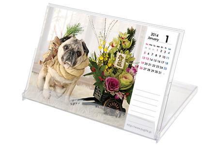 2014年 オリビアカレンダー(イメージ)