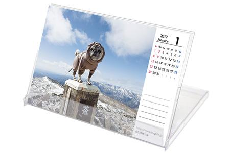 2017年 オリビアカレンダー できました。