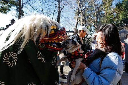 オリーは多摩川浅間神社へ初詣に行きました。