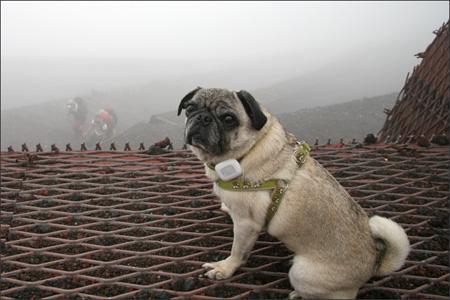 まったく景色が見えず、残念な登山でした…。
