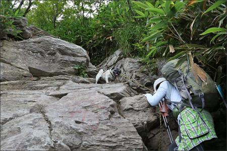 這い登るママをクールに見つめるオリビア。