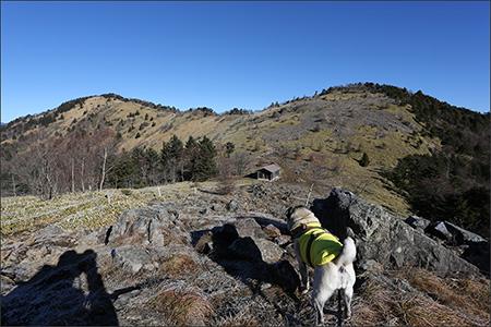 笹原に岩がごろごろしている賽ノ河原