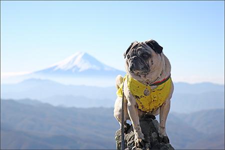 雷岩からの富士山は遮るものがなく、きれいですね。