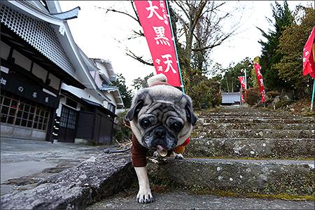 畑宿から元箱根まで、箱根旧街道を歩きました。