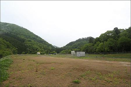 ものすごく広い敷地。ドッグランはここから見えません。