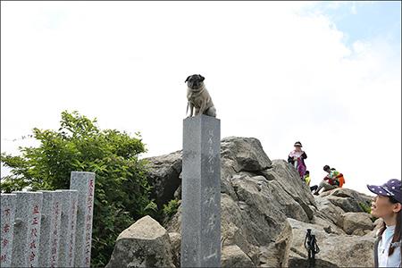 女体山の山頂標識でお決まりの記念撮影。