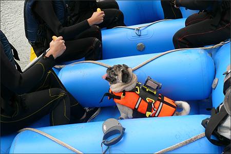 まずは川岸でボートの漕ぎ方を練習。オリビアも熱心に見学。